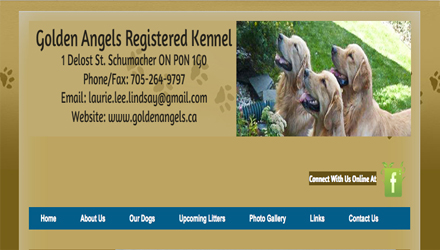 link to goldenangels.ca website